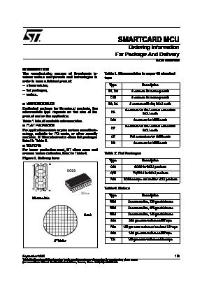 ST19SF08CD45XXXZ image
